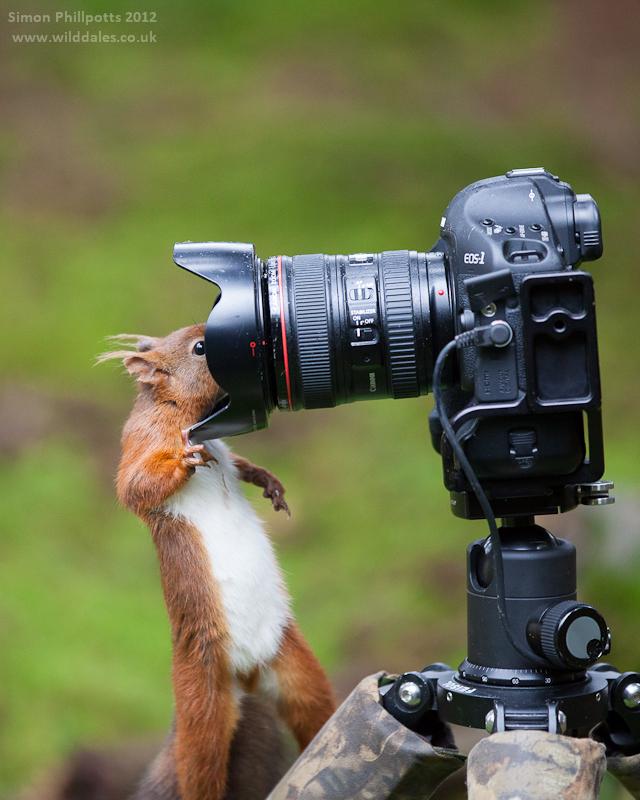 hoc chup anh, học chụp ảnh thiên nhiên
