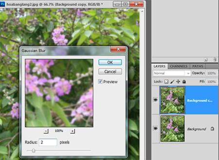 Học Photoshop - Thủ thuật làm mờ hậu cảnh