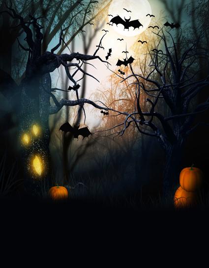 5x7ft-Photo-Studio-Equipment-Thin-Vinyl-Photography-Backdrop-Fairy-Tale-Halloween-Photo-Studio-Background-HA-077