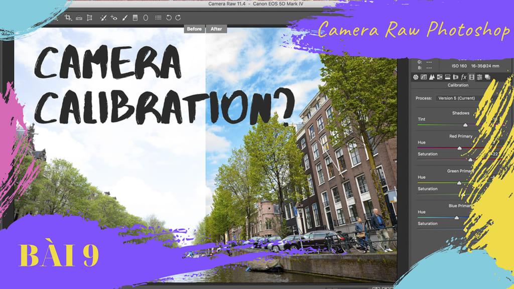 cách dùng camera calibration trong camera raw
